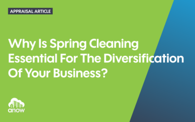 Why Is Spring Cleaning Essential For The Diversification Of Your Business?